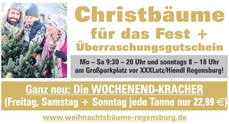 weihnachtsbaum Zentrale Regensburg