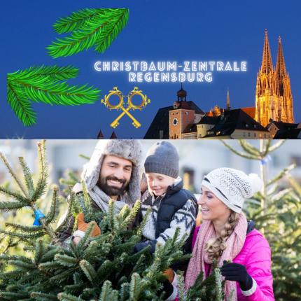 Christbaumverkauf für Regensburg 2017